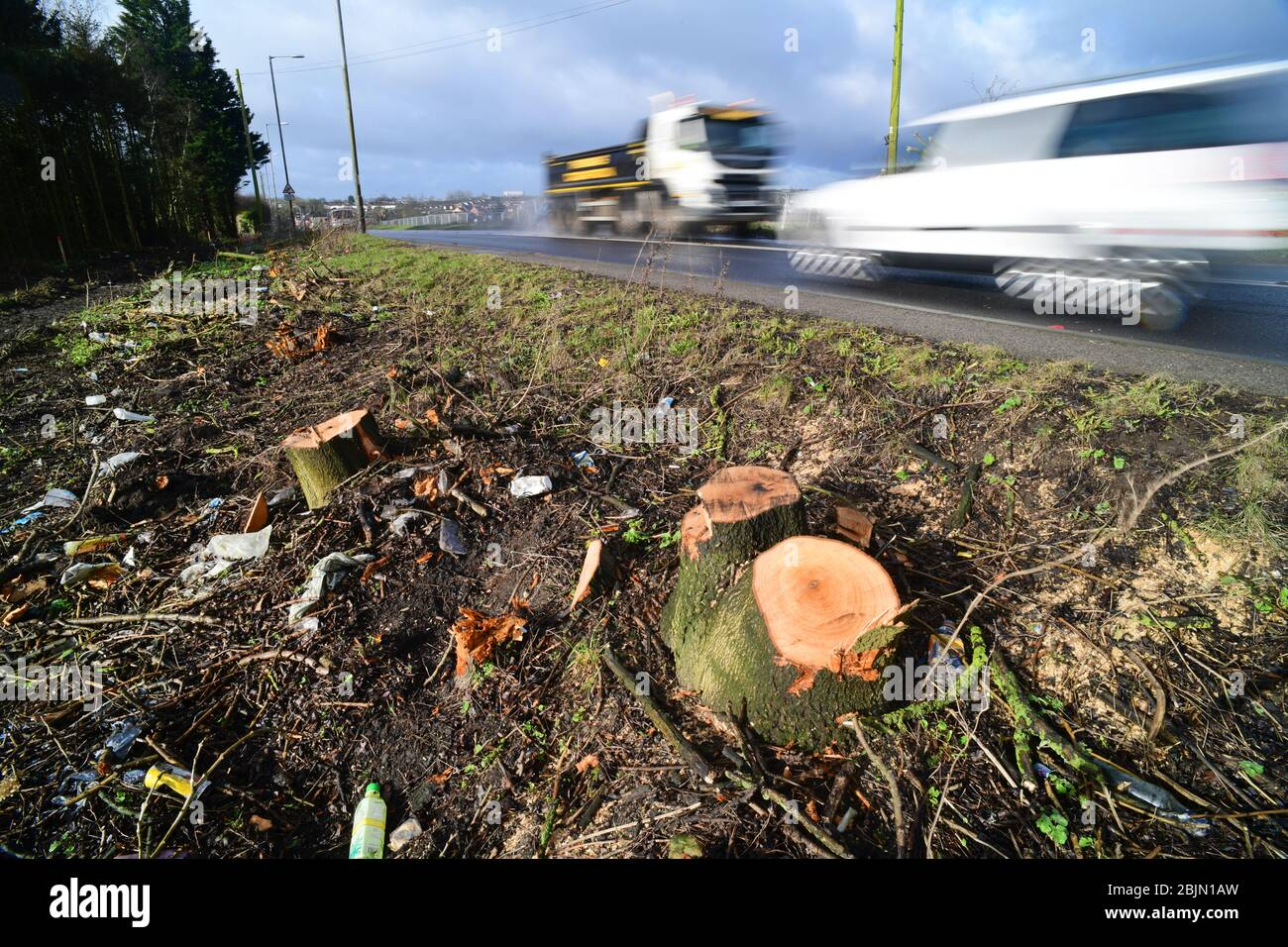 traffic passing remains of tree trucks of trees removed due to new road construction leeds yorkshire united kingdom Stock Photo
