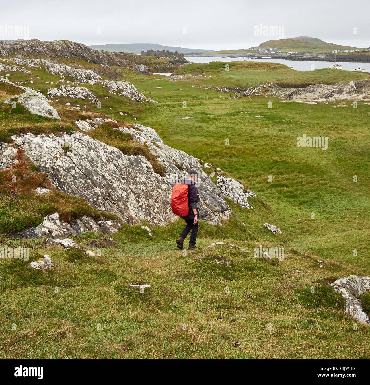 A walker approaching Cromwell's Barracks a ruined fort guarding the entrance to Inishbofin harbour off the coast of Connemara in the west of Ireland Stock Photo