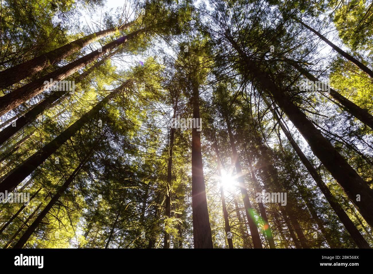 Squamish, near Vancouver, British Columbia, Canada Stock Photo