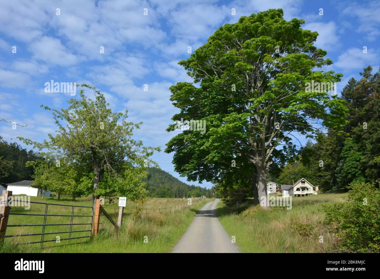 The settlement of Prevost on Stuart Island in the San Juan Islands, Washington State, USA. Stock Photo