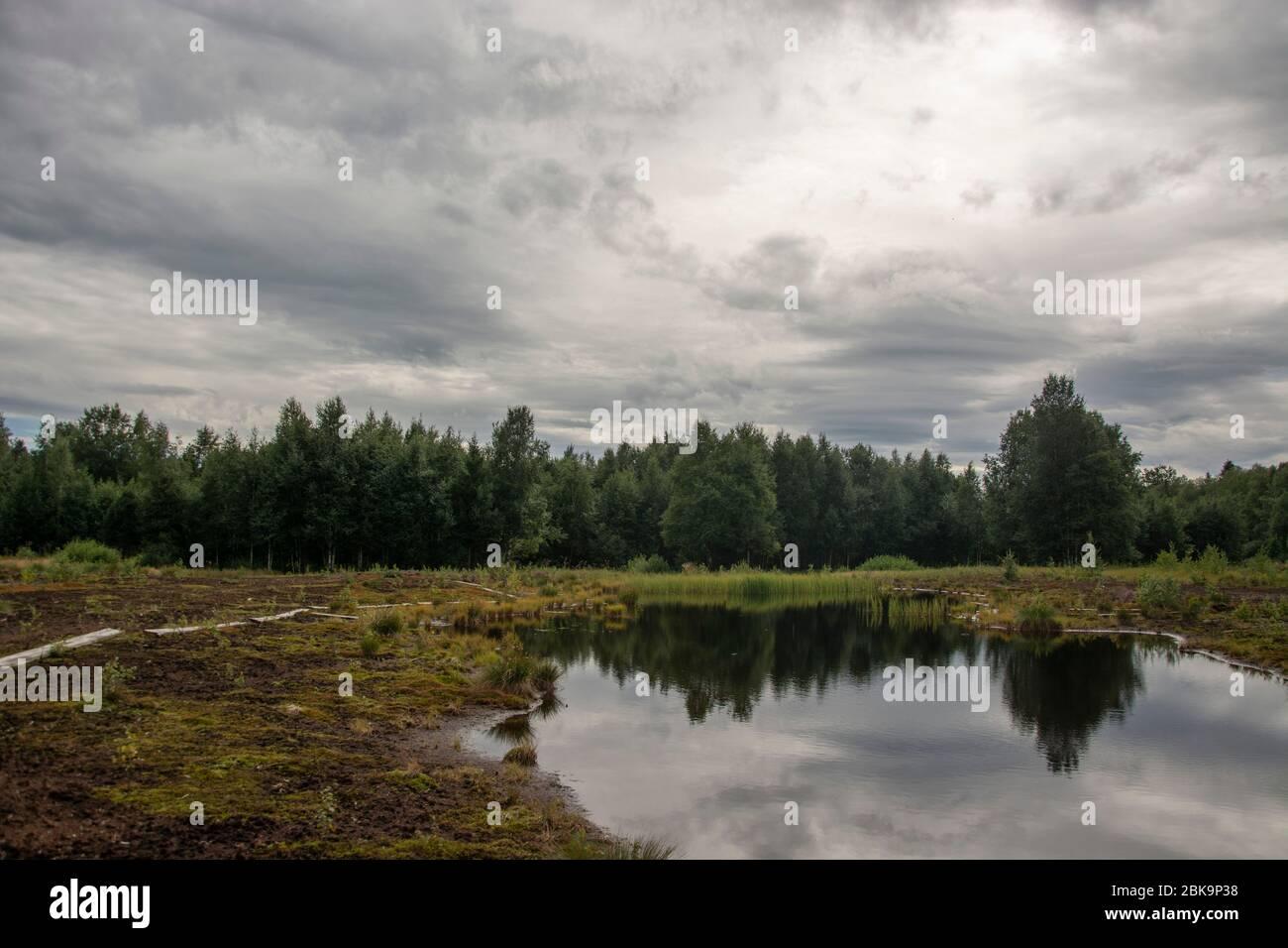 Die Moorlandschaft von Les Ponts-de-Martel im Neuenburger Jura, Schweiz Stock Photo