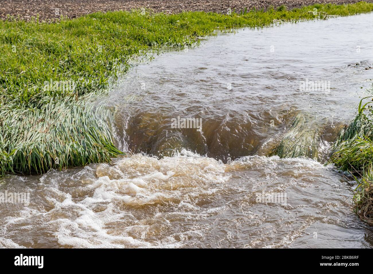 Water flowing in farm field waterway after heavy rain and storms caused flooding. Concept of soil erosion, water runoff control and management Stock Photo