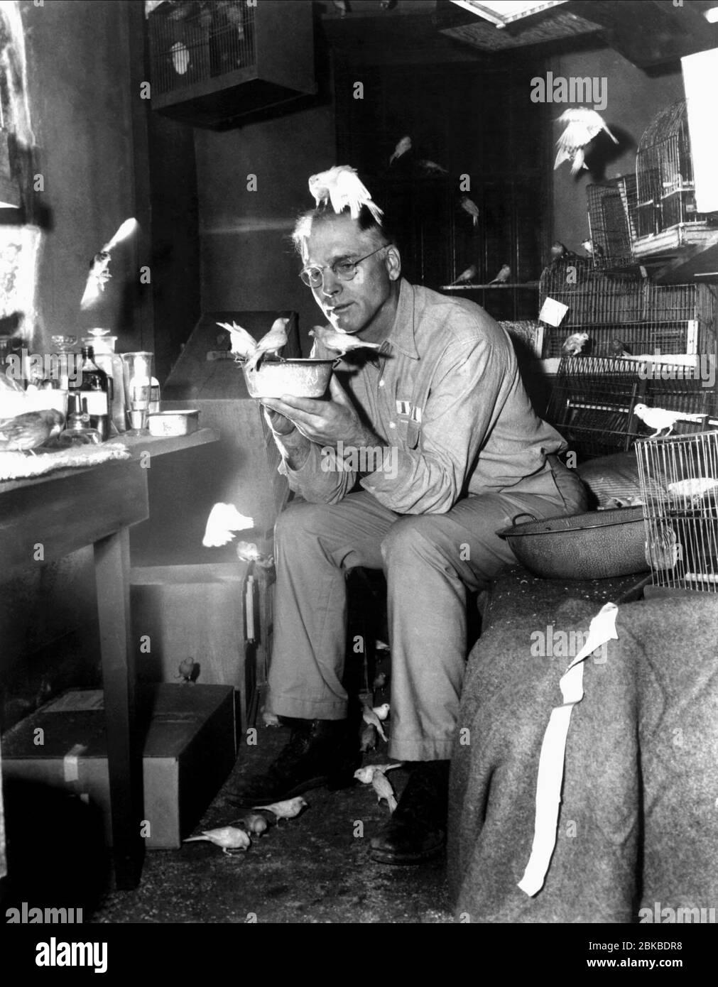 BURT LANCASTER, THE BIRDMAN OF ALCATRAZ, 1962 Stock Photo