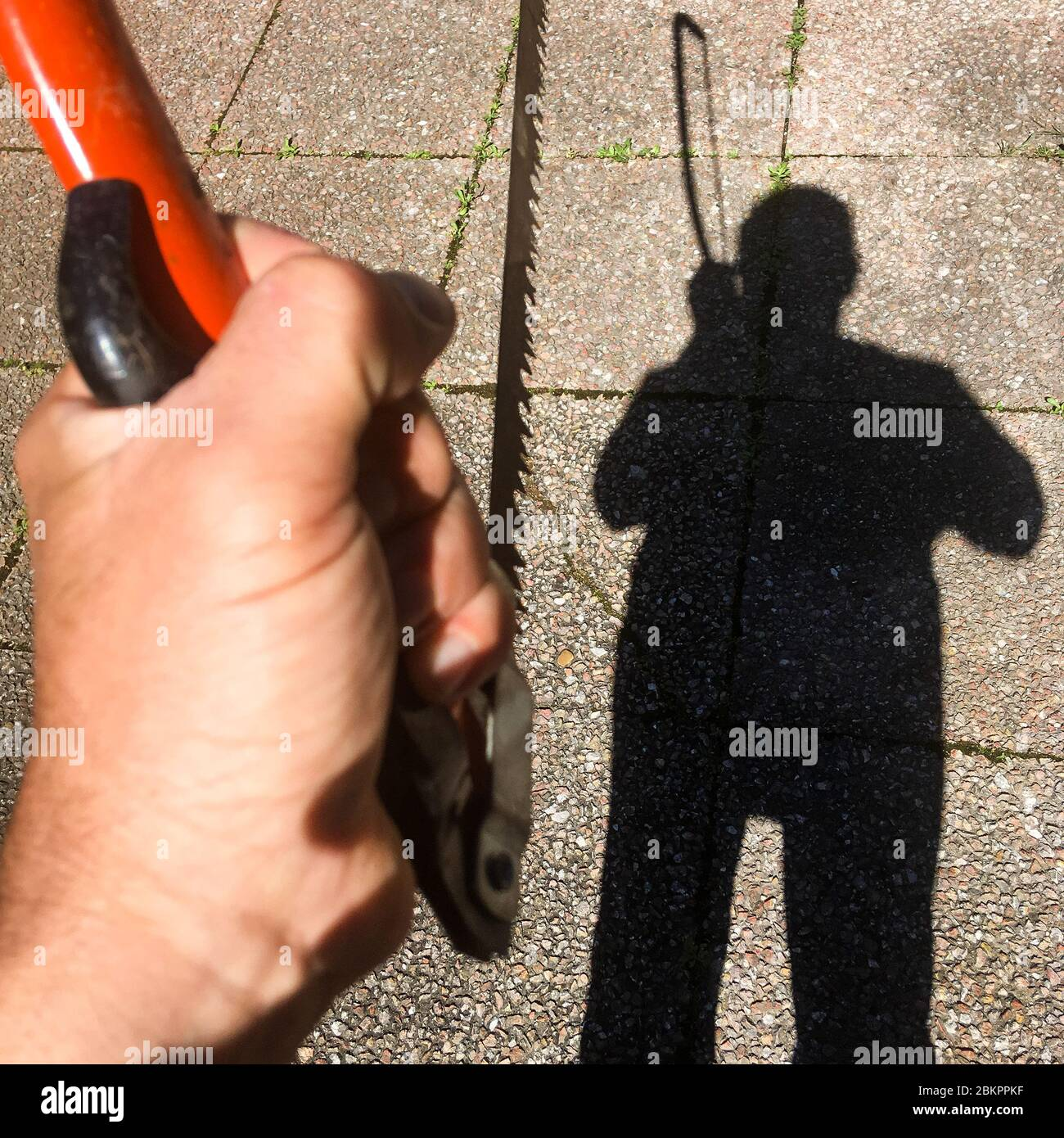 Shadow of a man holding a saw, Bron, France Stock Photo