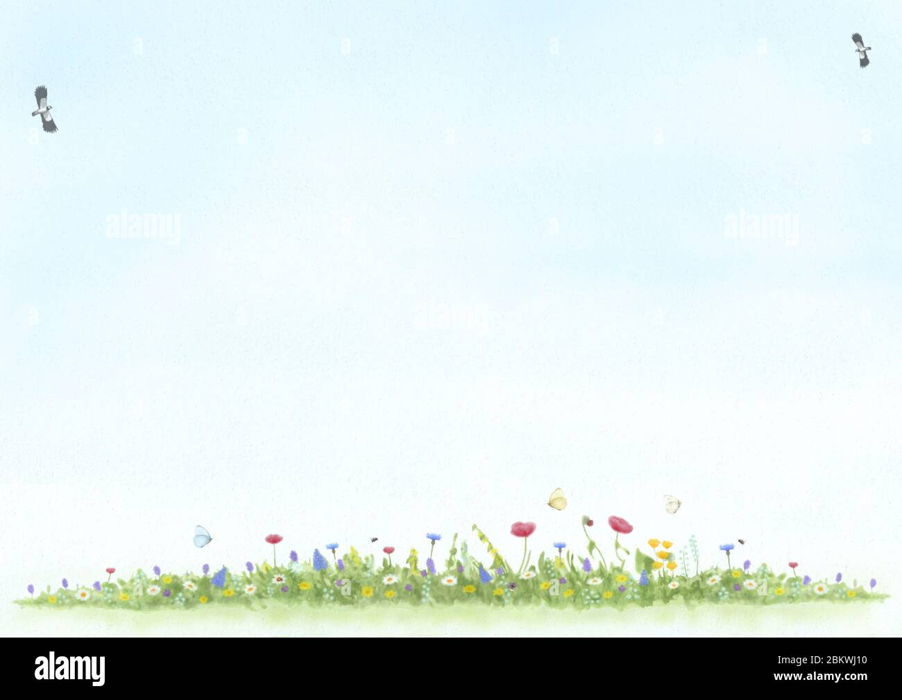 abstract illustration, hand drawn and painted view of meadow with wild flowers, birds and butterfly, mixed art on textured background Stock Photo