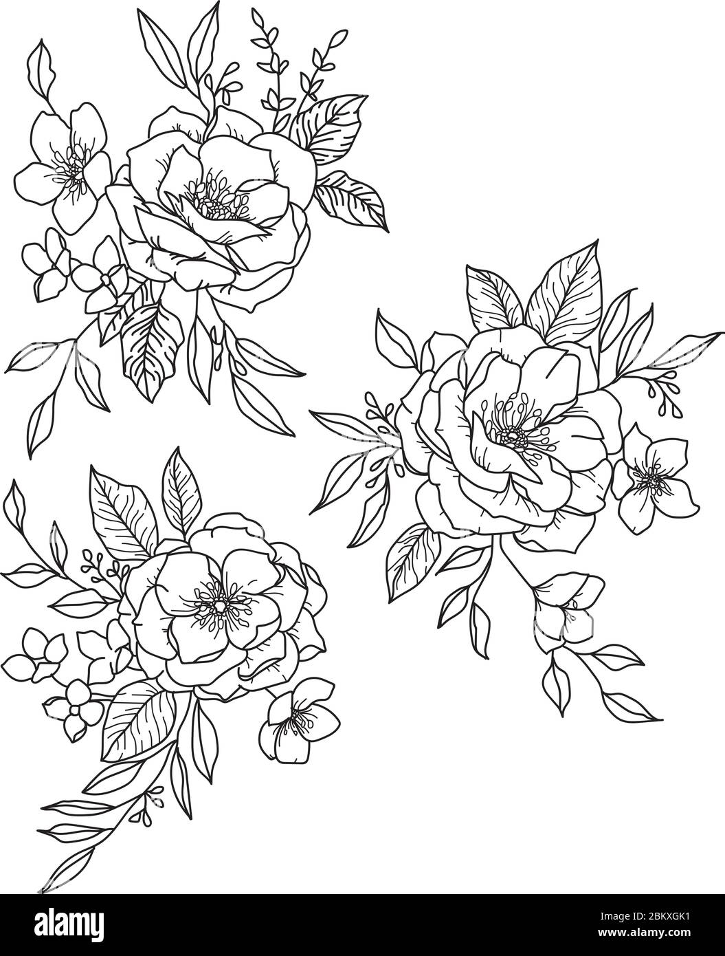 Boho Flowers And Foliage Three Small Black And White Peony Bouquets With Leaves Stock Vector Image Art Alamy