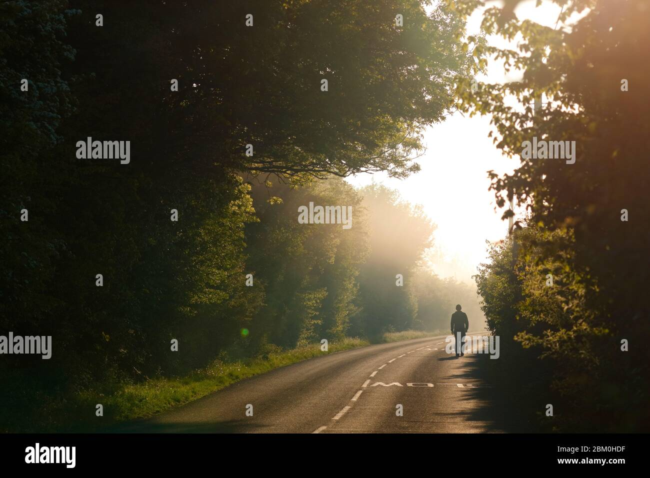 A man walks along a country lane on a misty morning at Fairburn Ings Nature Reserve. Stock Photo