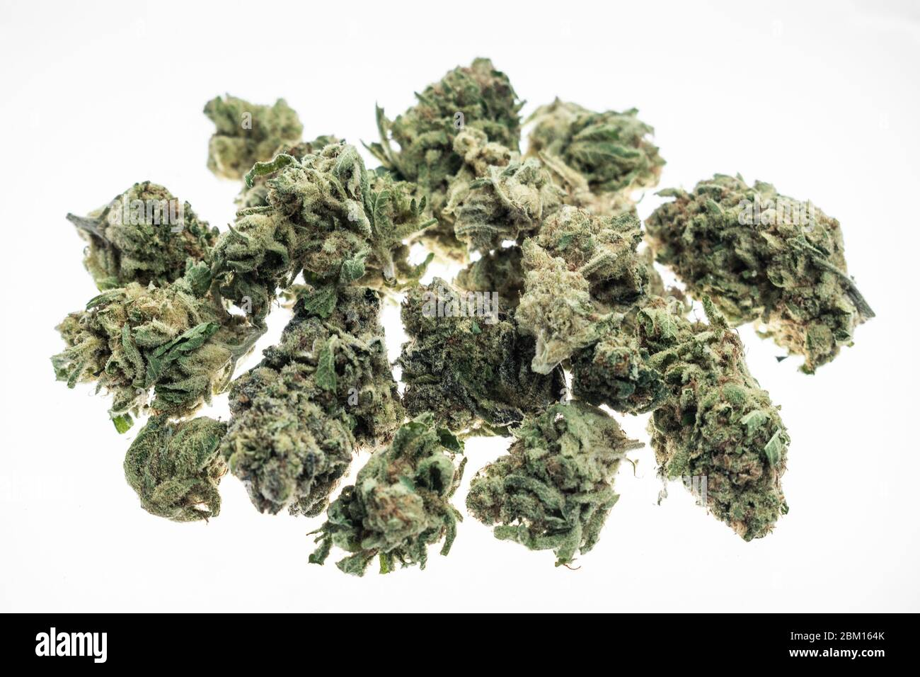 US medical marijuana cannabis buds closeup on white studio background in california Stock Photo