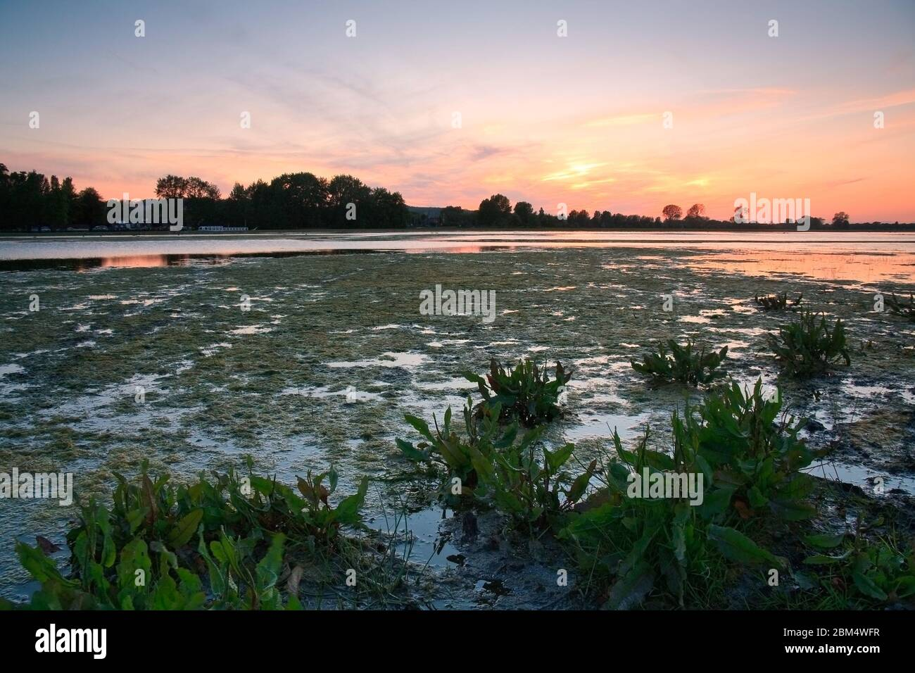 Evening flood plains of river Thames near Oxford. Stock Photo