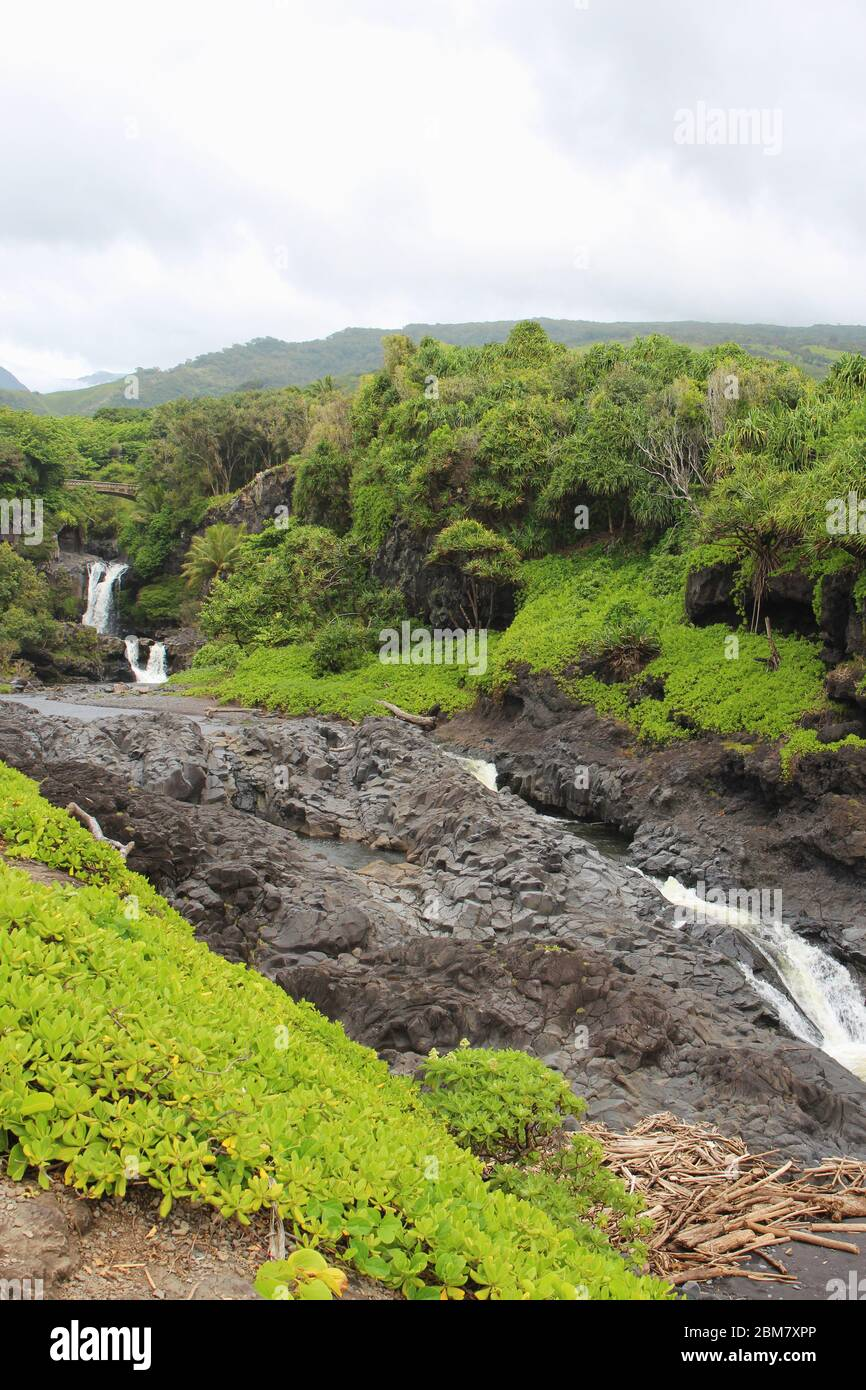 Multiple waterfall of the Palikea stream running through volcanic rock with Scaevola taccada growing on the rock at the Seven Sacred Pools in Hana, Ma Stock Photo