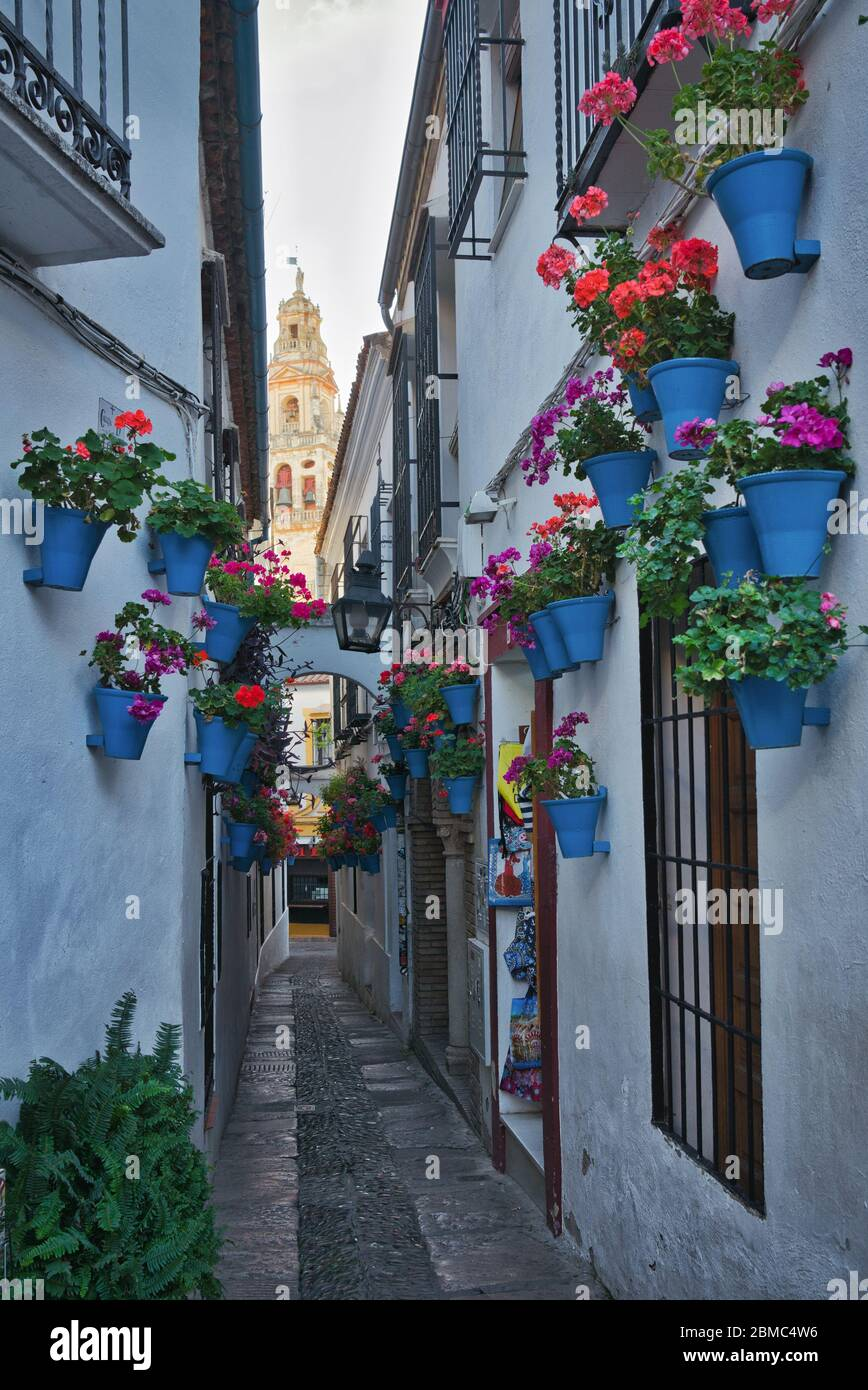 Photo of the Calleja de las Flores in Cordoba Spain Stock Photo