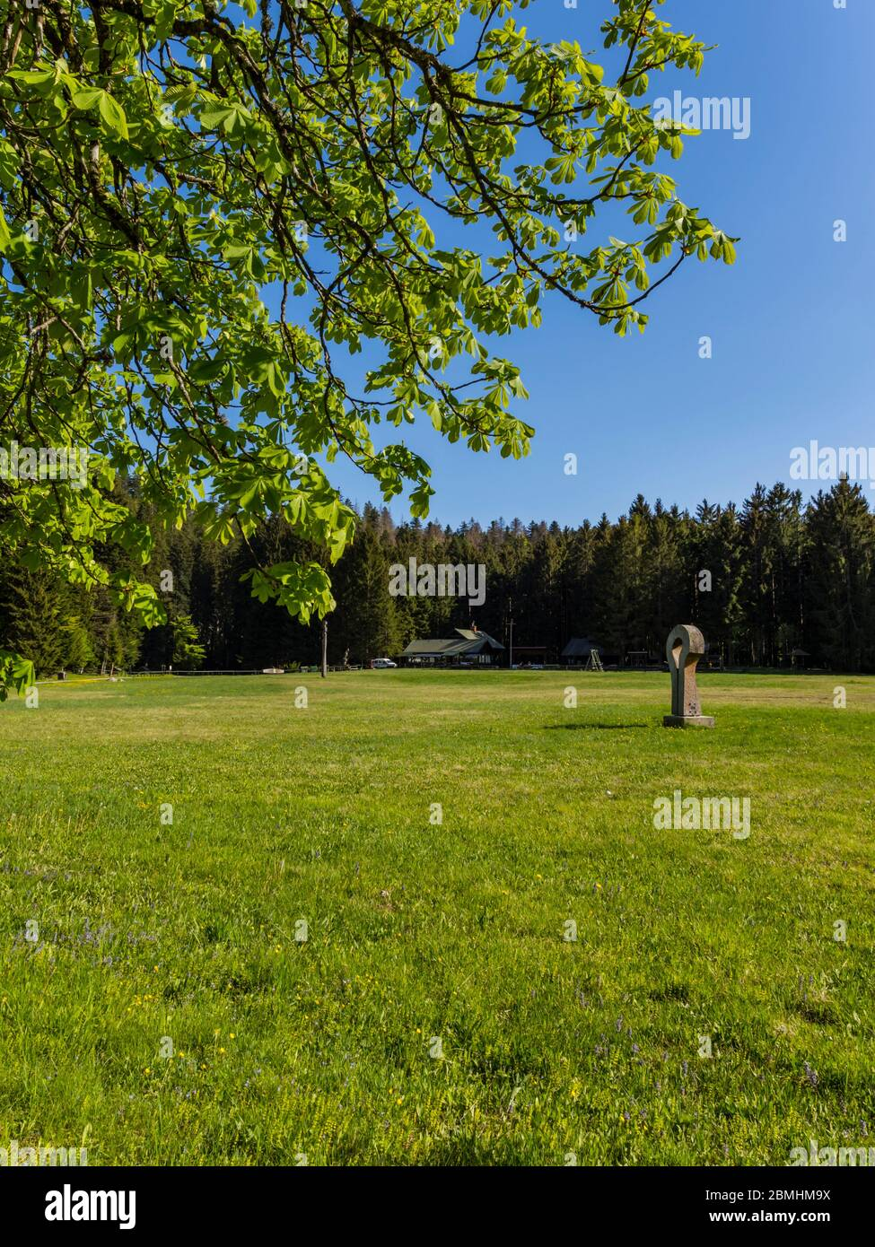 Preserved forest resort Golubinjak near Lokve Croatia Europe Stock Photo