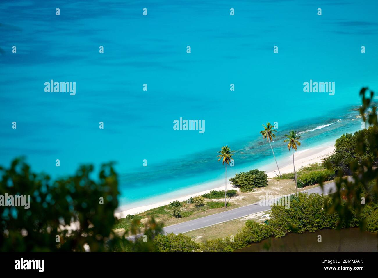 Darkwood Beach with palm trees seen from a high observation point in Antigua. Stock Photo