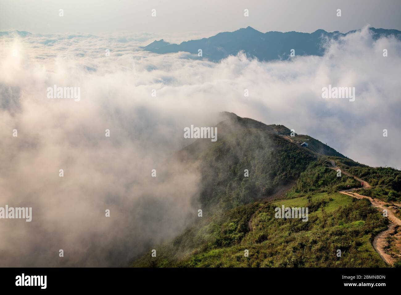 Ta Xua is a famous mountain range in northern Vietnam. All year round, the mountain rises above the clouds creating cloud inversions. Stock Photo