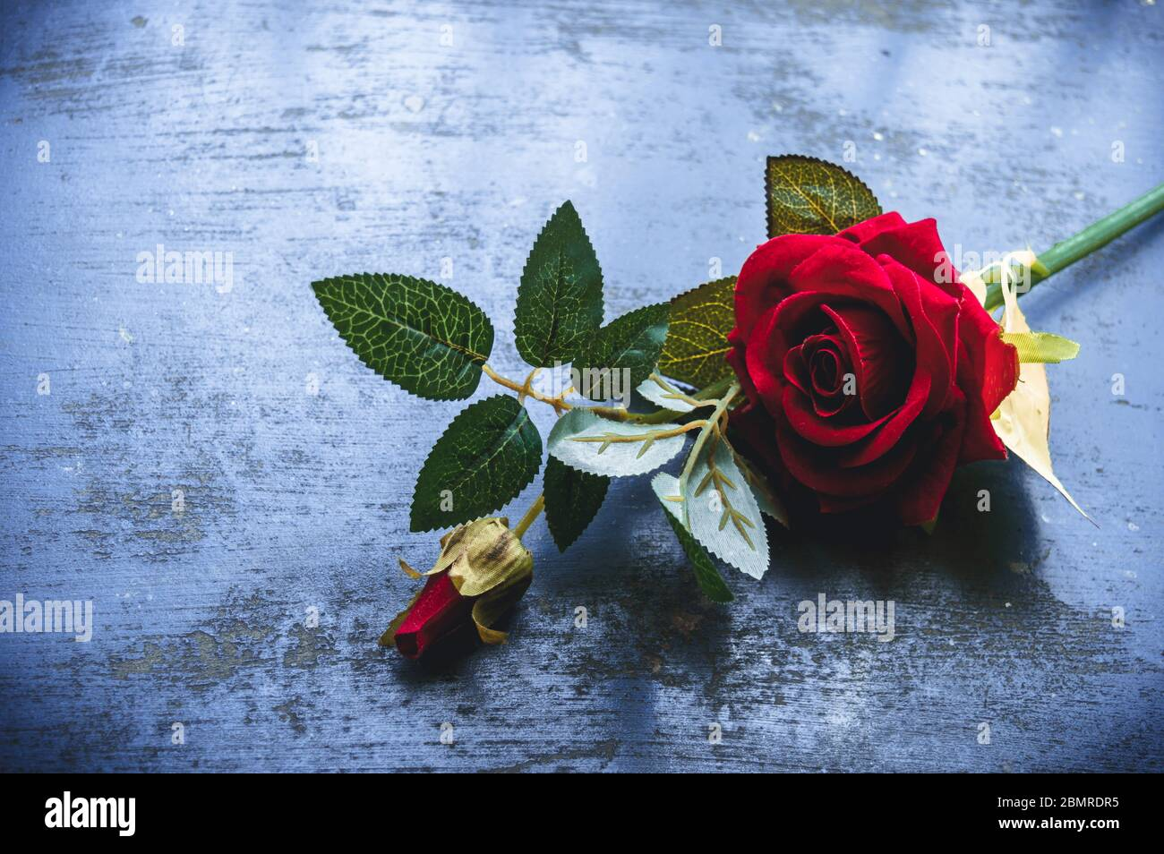 Red Rose Flower On Rustic Floor Nature Still Life Love Romantic Background Theme Wallpaper Web Banner Design Decoration For Friendship And Valentine Stock Photo Alamy