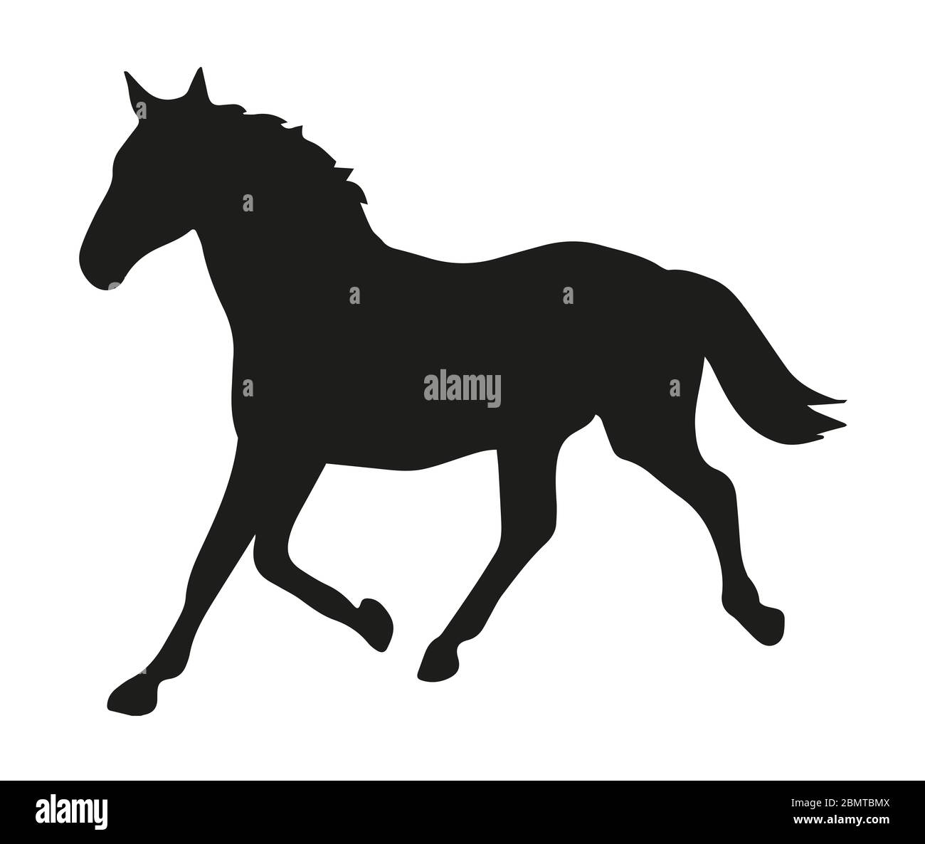 Horse Head Line Drawing High Resolution Stock Photography And Images Alamy