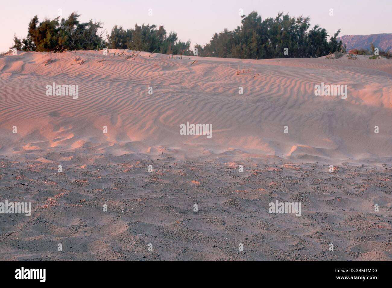 Beautiful Waves of sand on top of the dunes at Sunrise in Mesquite flat sand dunes wih green plants, Greece, Elafonisy Stock Photo