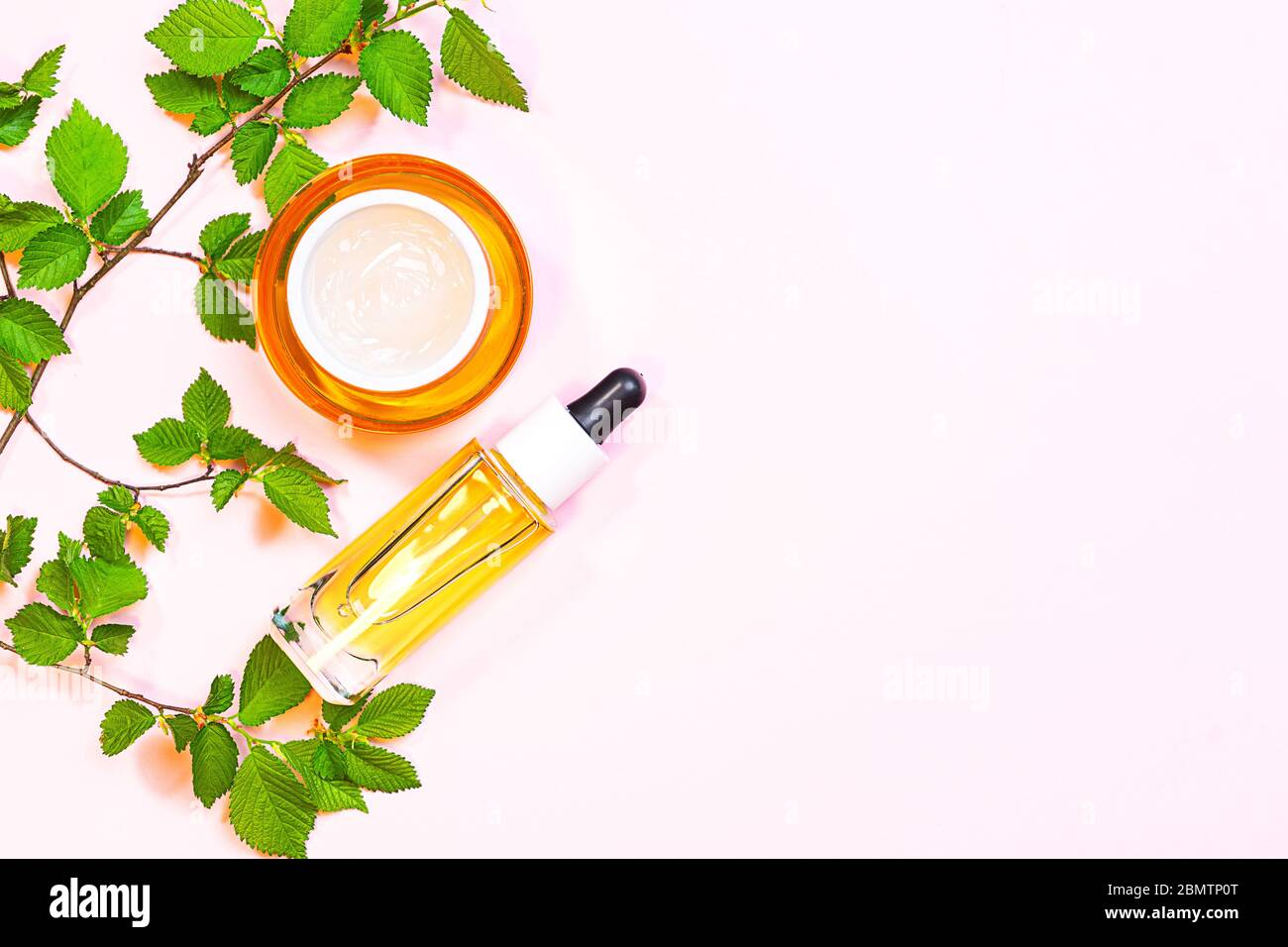 Skin Care Beauty Products Natural Cosmetic Flat Lay Image On Pink Background Natural Cosmetic Skincare Bottle Serum And Organic Green Leaf Homemade And Beauty Product Concept Stock Photo Alamy