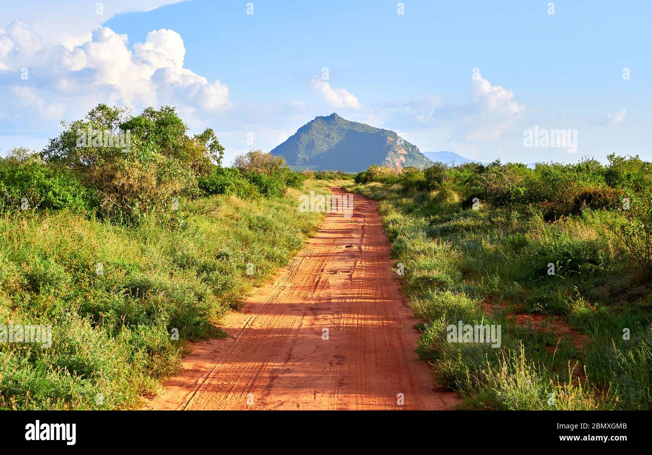 Red dirt road through thick bush in Tsavo National park Southern Kenya with an outlier of the Taita Hills in the distance Stock Photo