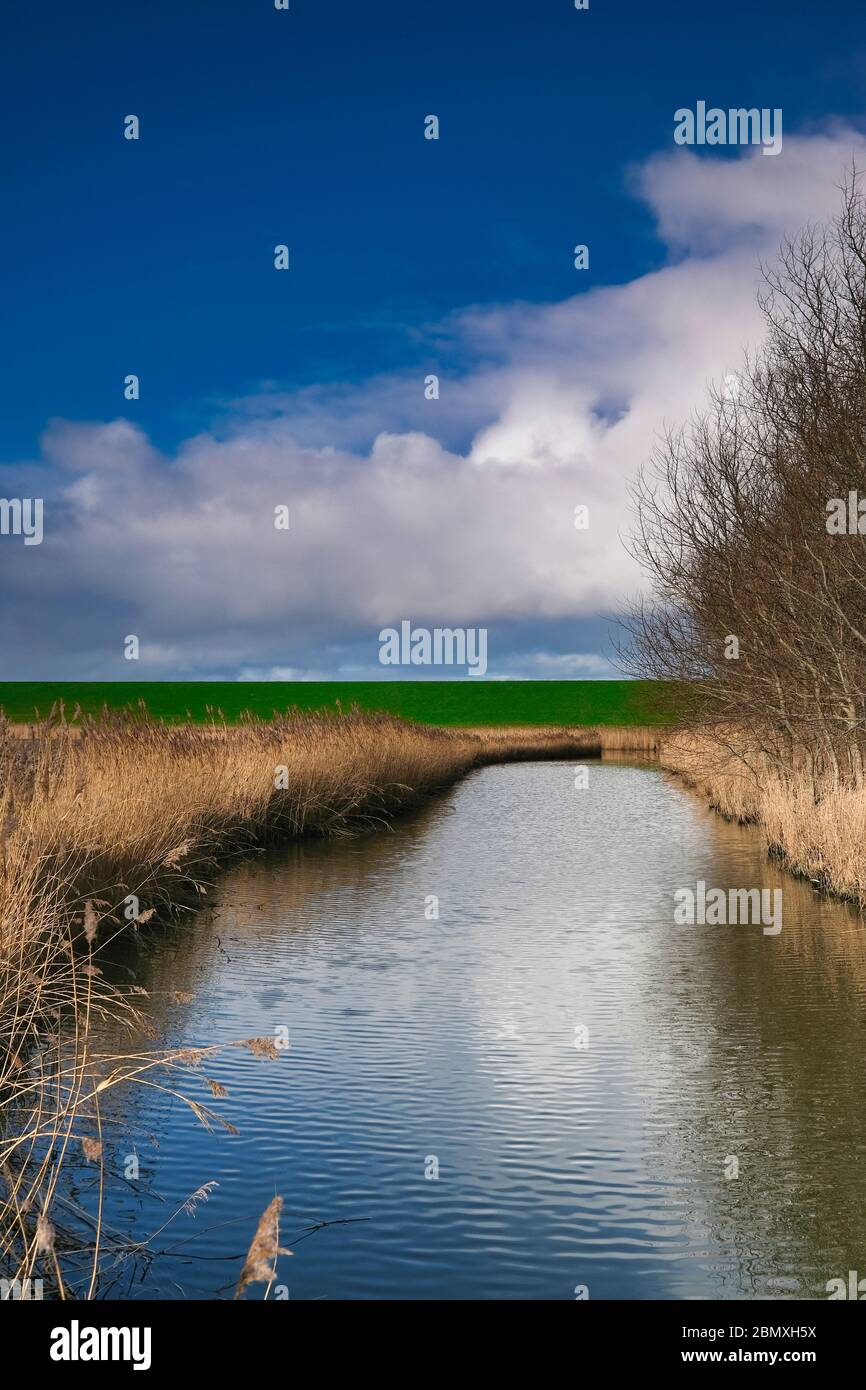 Landscape in the Netherlands with a river, grasses and a dramatic sky, reflection in the water. trees in the background. long exposure. Stock Photo