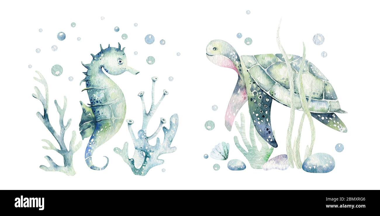 Mermaid clipart Sea Creatures Turtle Underwater Jellyfish Whale Watercolor Clipart Watercolor Ocean Babygirl Hand Painted Pink