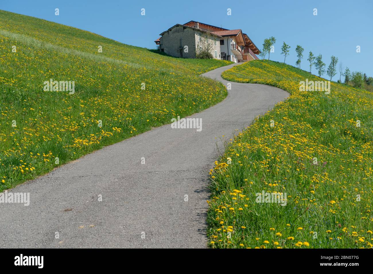 road that connects the house to the hills Stock Photo