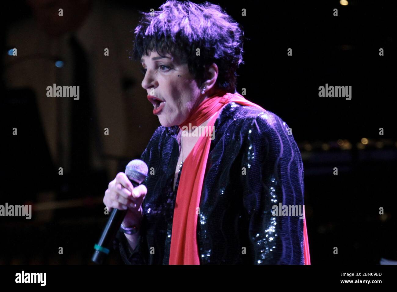 Liza High Resolution Stock Photography and Images - Alamy