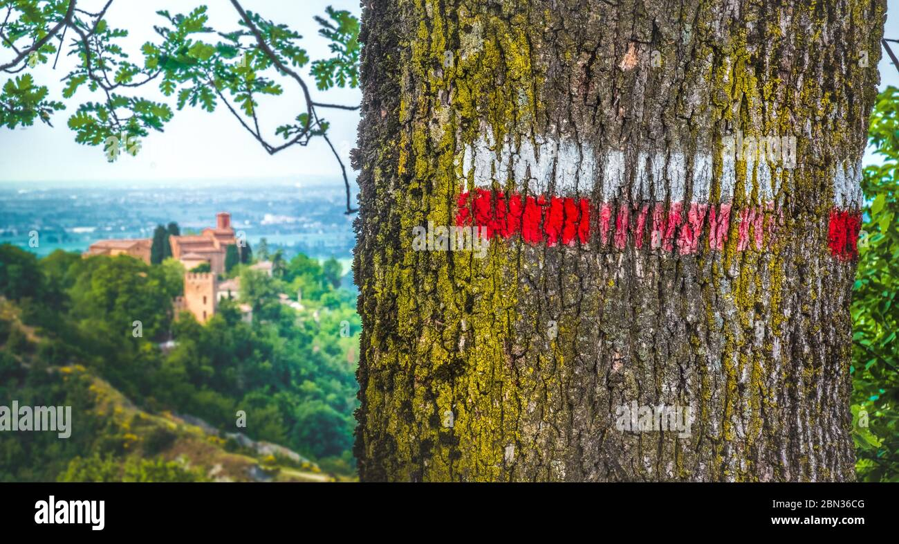 red signs on marked tree hiking trail in italy - Monteveglio - Bologna - Italy Stock Photo