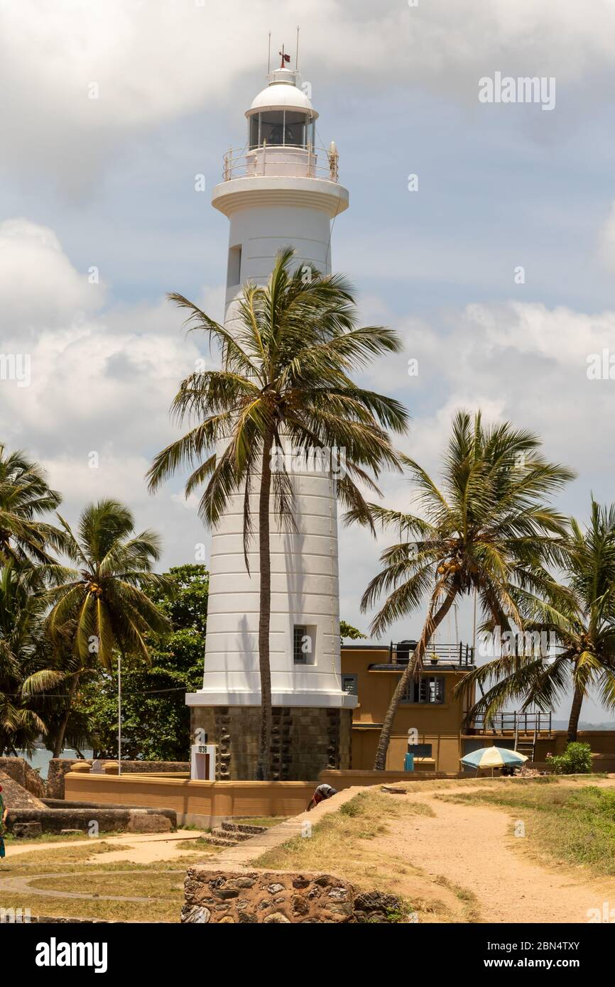 Cylindrical white lighthouse set amongst a grove of tropical palm trees against a cloudy sky Stock Photo