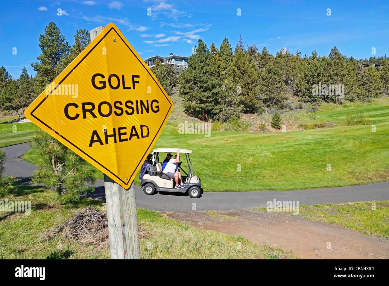 Golfers in a battery powered golf cart go from hole to hole on a golf course in Bend, Oregon. Stock Photo