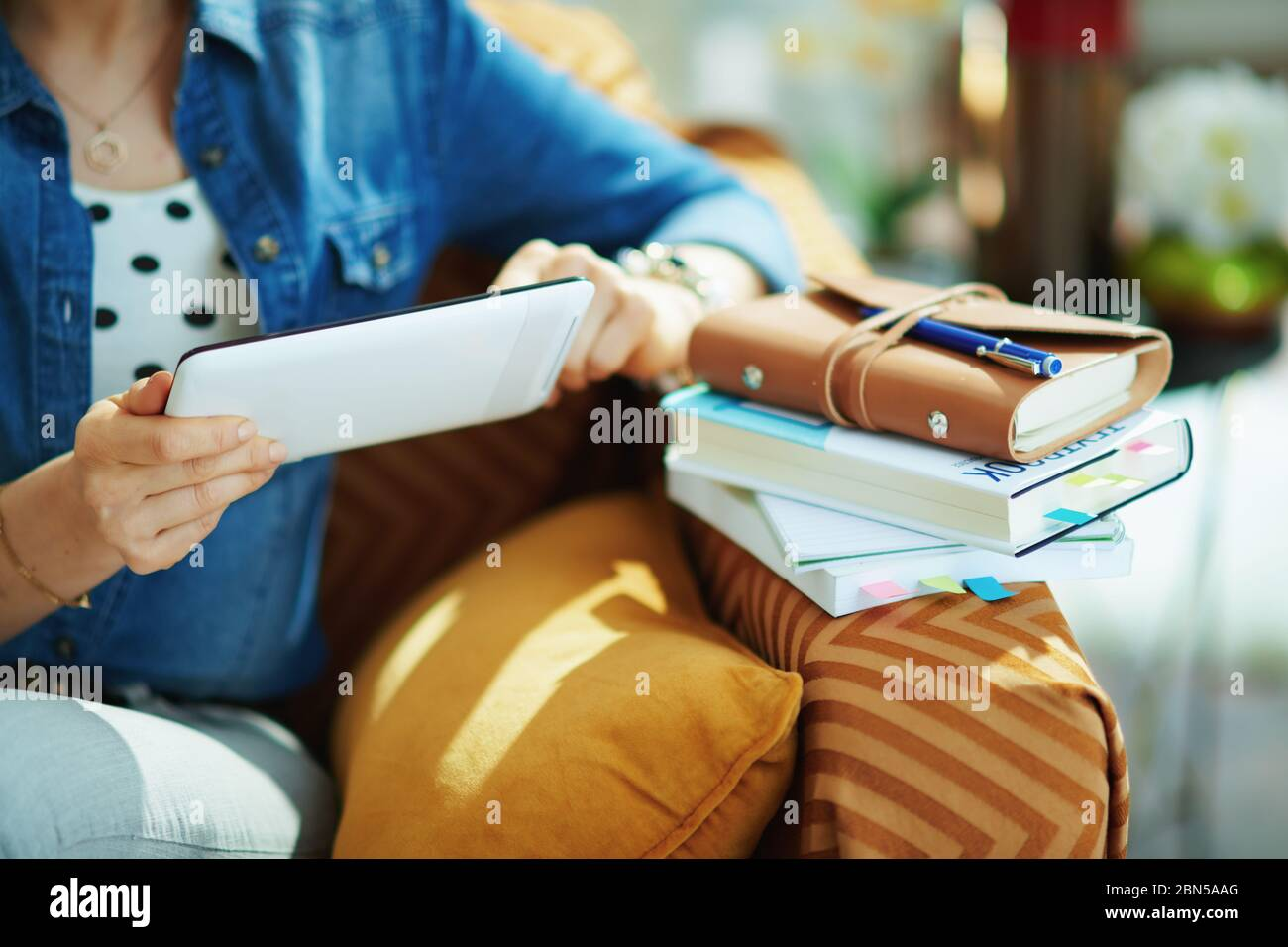 Closeup on woman in jeans shirt with tablet PC study online in the living room in sunny day. Stock Photo