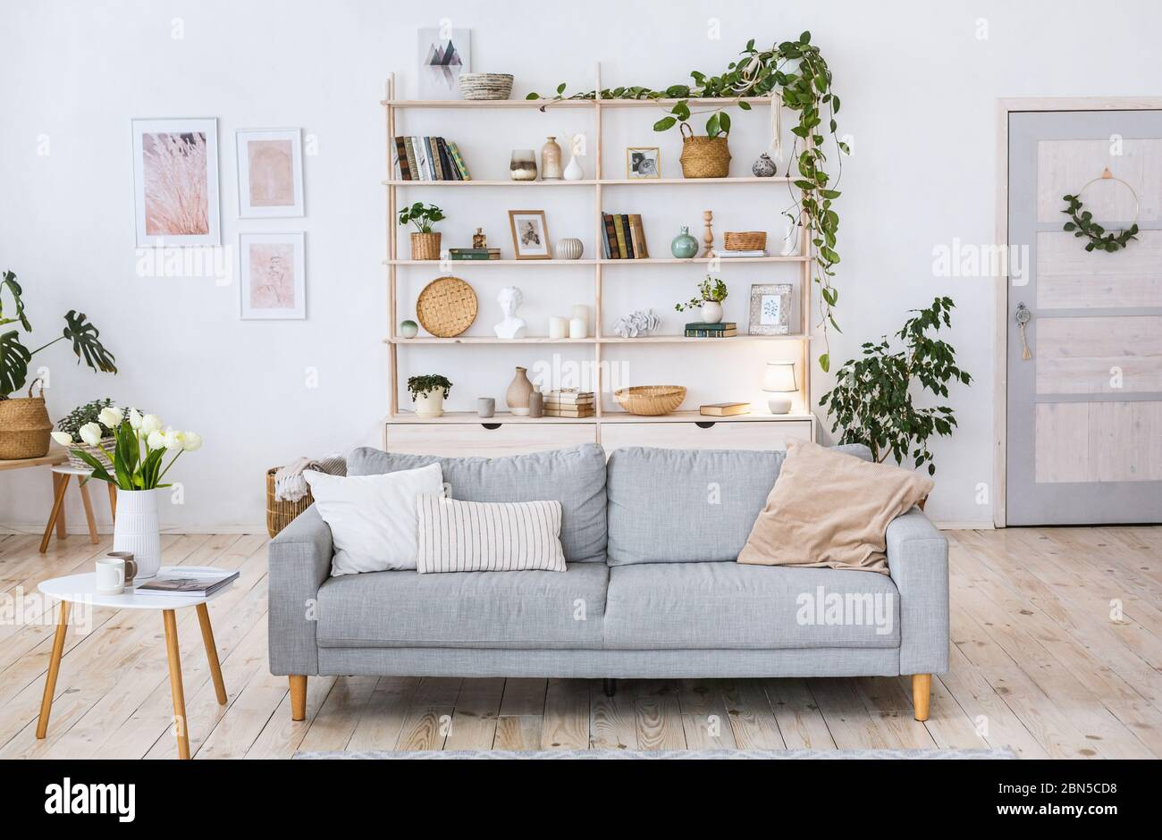 Cozy Design Light Wall Wooden Floor Blue Sofa And Plants In Pot Stock Photo Alamy