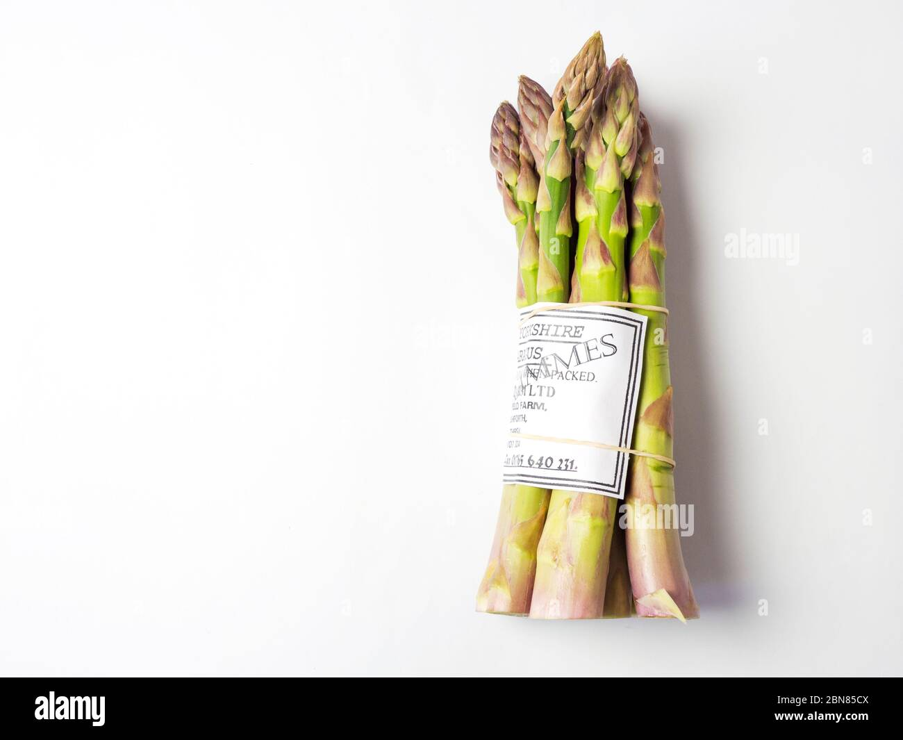 A bunch of fresh Yorkshire asparagus from a farm shop isolated on a white background with copy space Stock Photo