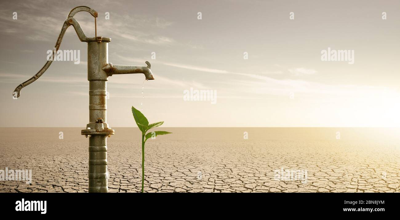 Water flows from the rusty water pump to the plant in the desert. Drought and water scarcity caused by global warming Stock Photo