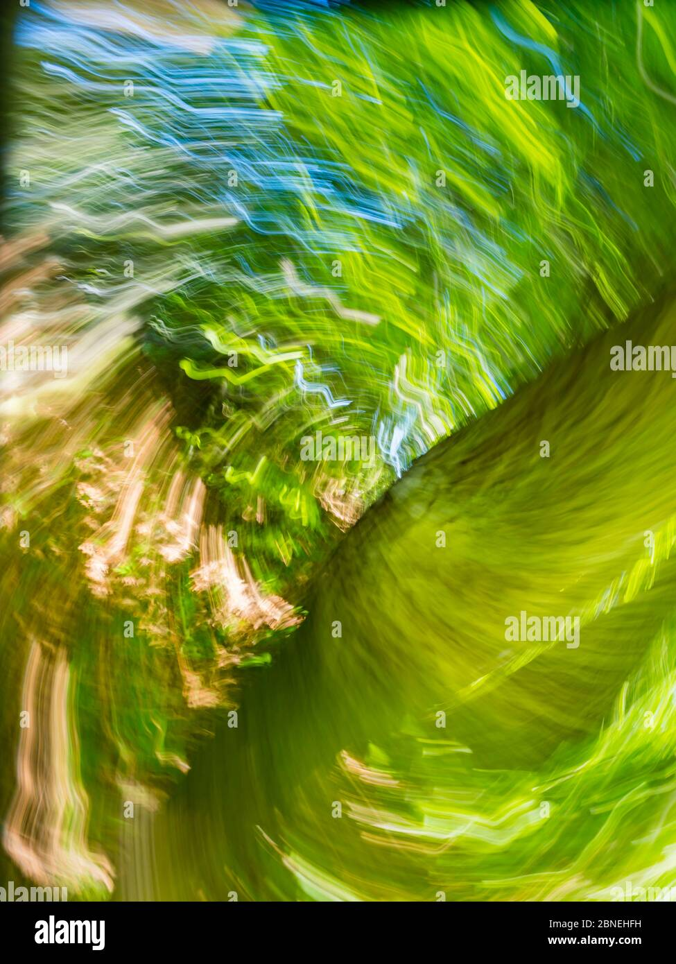 Green forest creating vertigo intentionally blurry representing maximum utmost circular speed speedy fast movement Stock Photo