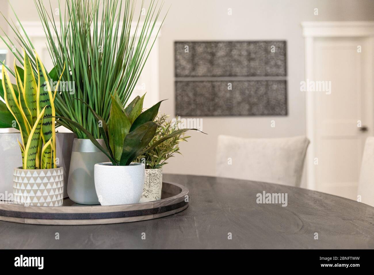 Modern Home Decor Items Including Plants And Vases Atop A Dining Table Appear Inside This Sleek Modern Home Stock Photo Alamy
