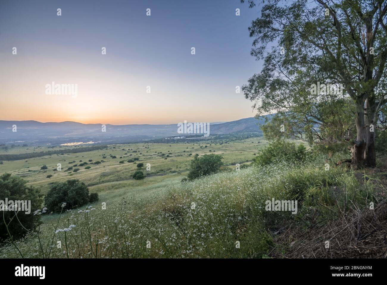 Sunset view of the slopes of the Golan Heights, and the Hula Valley. Northern Israel Stock Photo