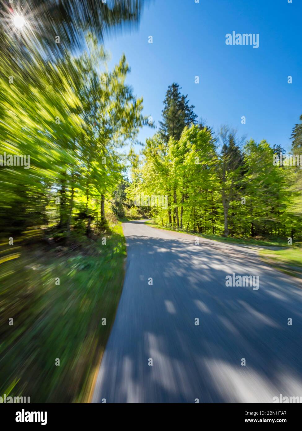 Green forest countryroad road fast run drive intentionally blurry representing speed speedy fast movement runaway away sun frame extreme left corner Stock Photo