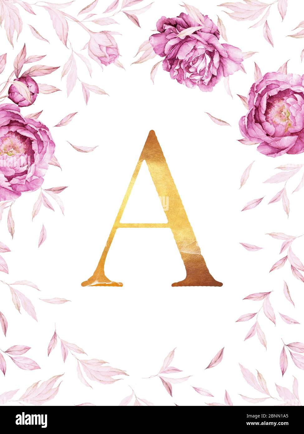 flower monogram floral wreather border watercolor pink peonies lush leaves rose gold custon newborn name poster floral background romantic wed 2BNN1A5