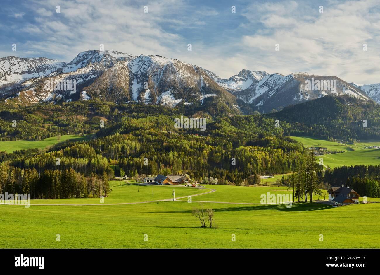 Warscheneck, Totes Gebirge, Vorderstoder, Northern Limestone Alps, Upper Austria, Austria Stock Photo