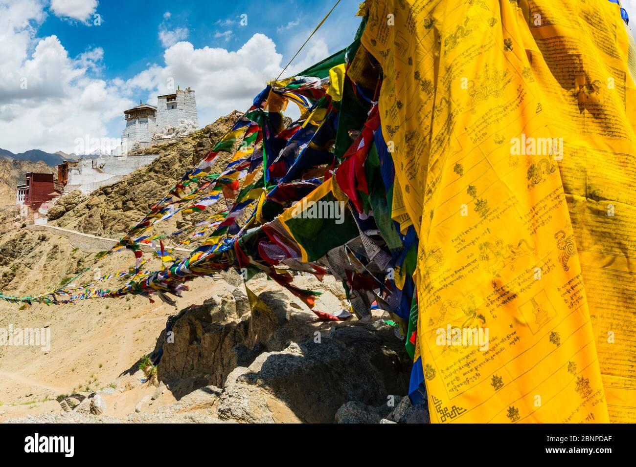 The Namgyal Tsemo Gompa Monastery, Tsenmo Hill, Leh, Ladakh, Jammu and Kashmir, India, Asia Stock Photo