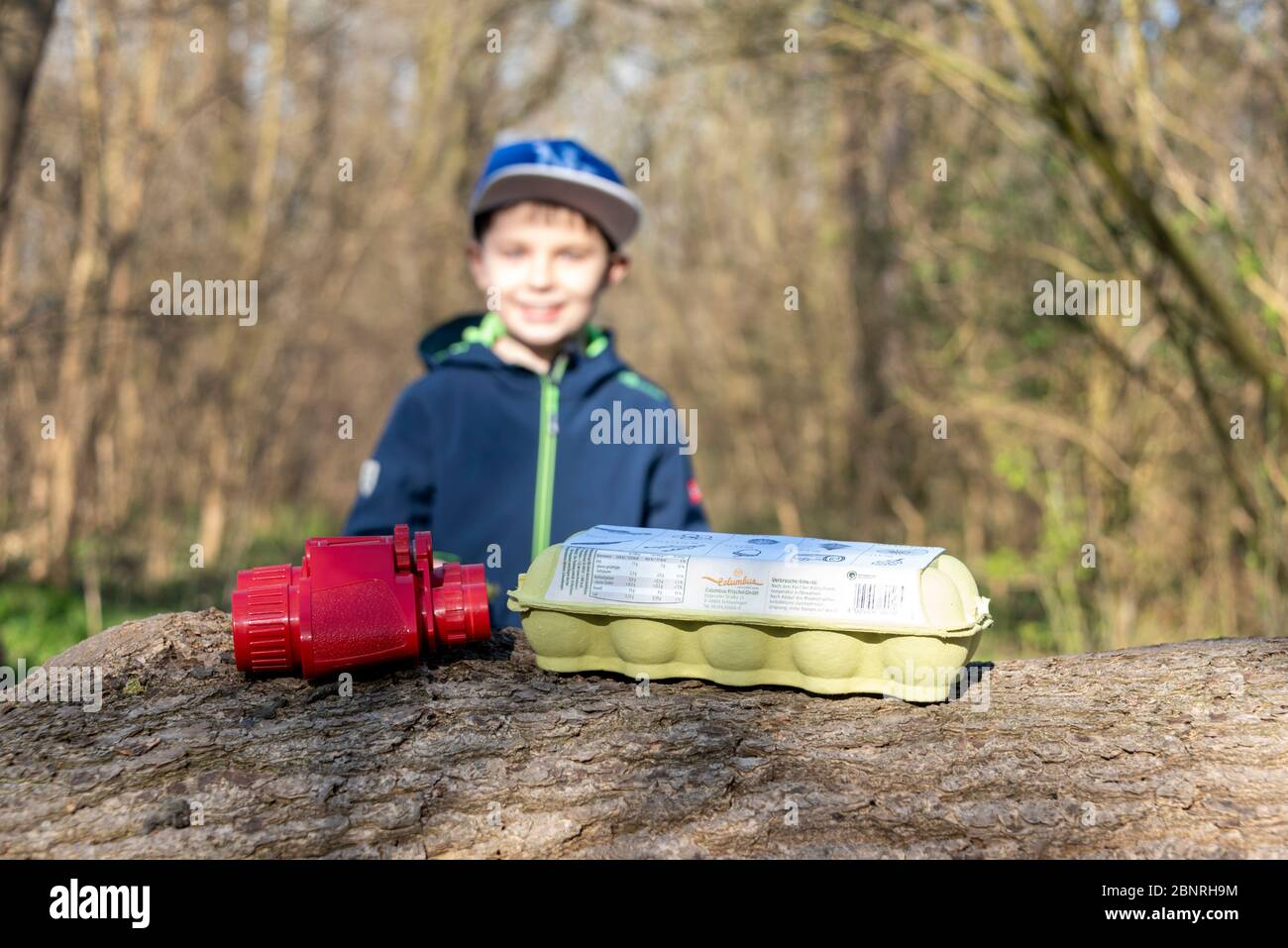 Boy, binoculars, egg packaging, a forest game to find leaves, ferns, mosses, feathers and small branches. Game idea in times of Corona. Stock Photo
