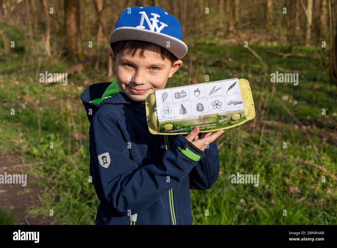 Boy is standing in the forest, holding egg packaging in his hand, a forest game to search for leaves, ferns, mosses, feathers and small branches. Game idea in times of Corona. Stock Photo