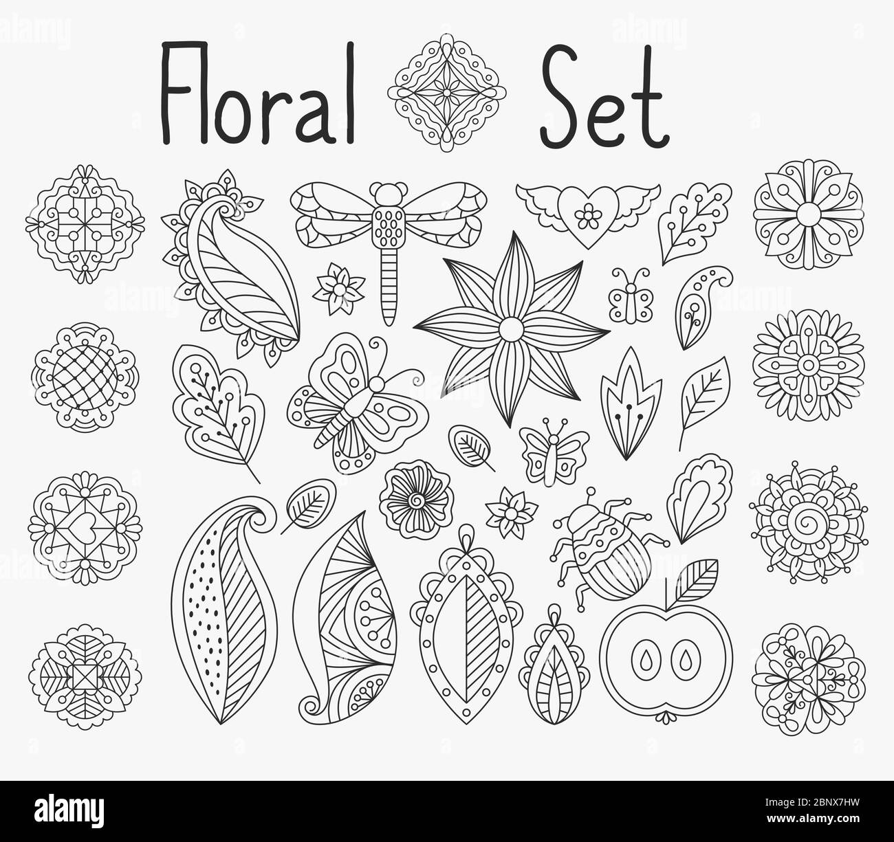 Vector Floral Set With Leaves And Herbs Bugs And Butterflies Hand Drawn Mandala Elements Stock Vector Image Art Alamy