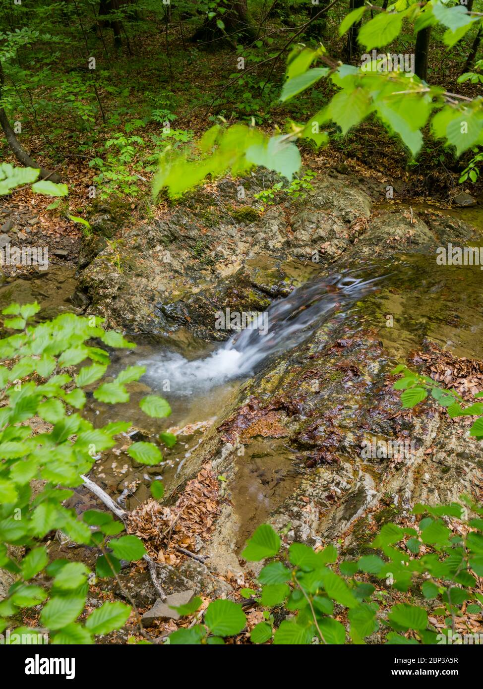 Brook flowing water stunning Spring Green nature color in forest flow captured in long exposure Stock Photo