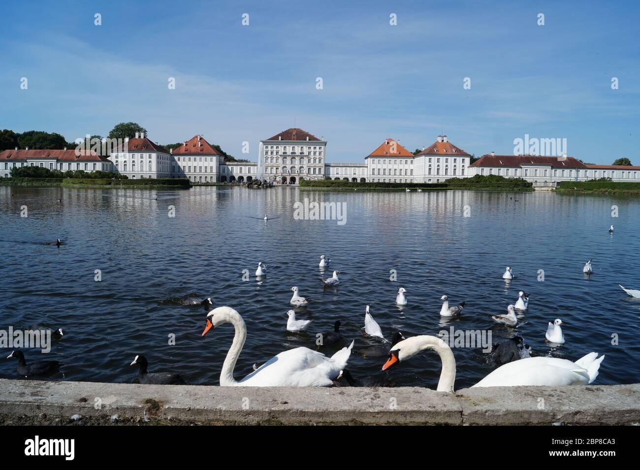 Schloss Nymphenburg mit Teich und Schwänen Stock Photo