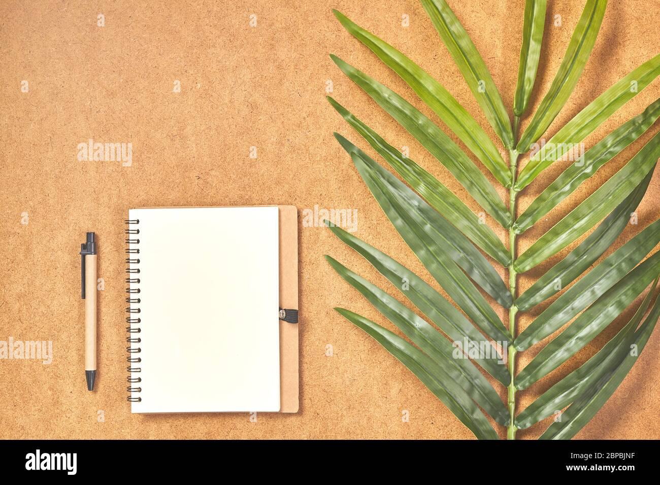 Pen Prepared To Writing On Mock Up Notebook In Top View With Tropical Leaves Stock Photo Alamy We print the highest quality tropical leaves notebooks on the internet. alamy