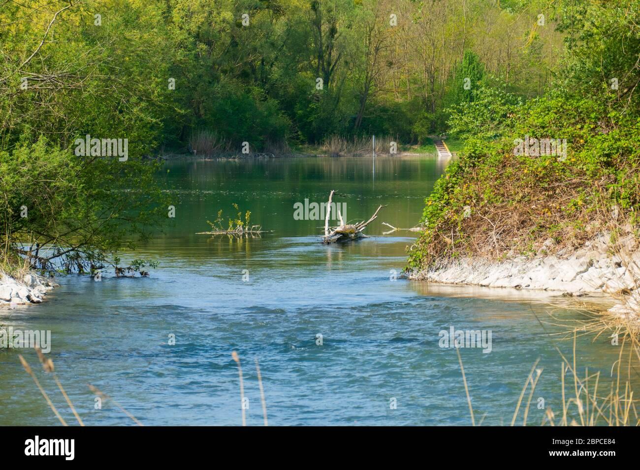 Altrhein, Rhein Aue, Fluß Landschaft bei Iffezheim Stock Photo