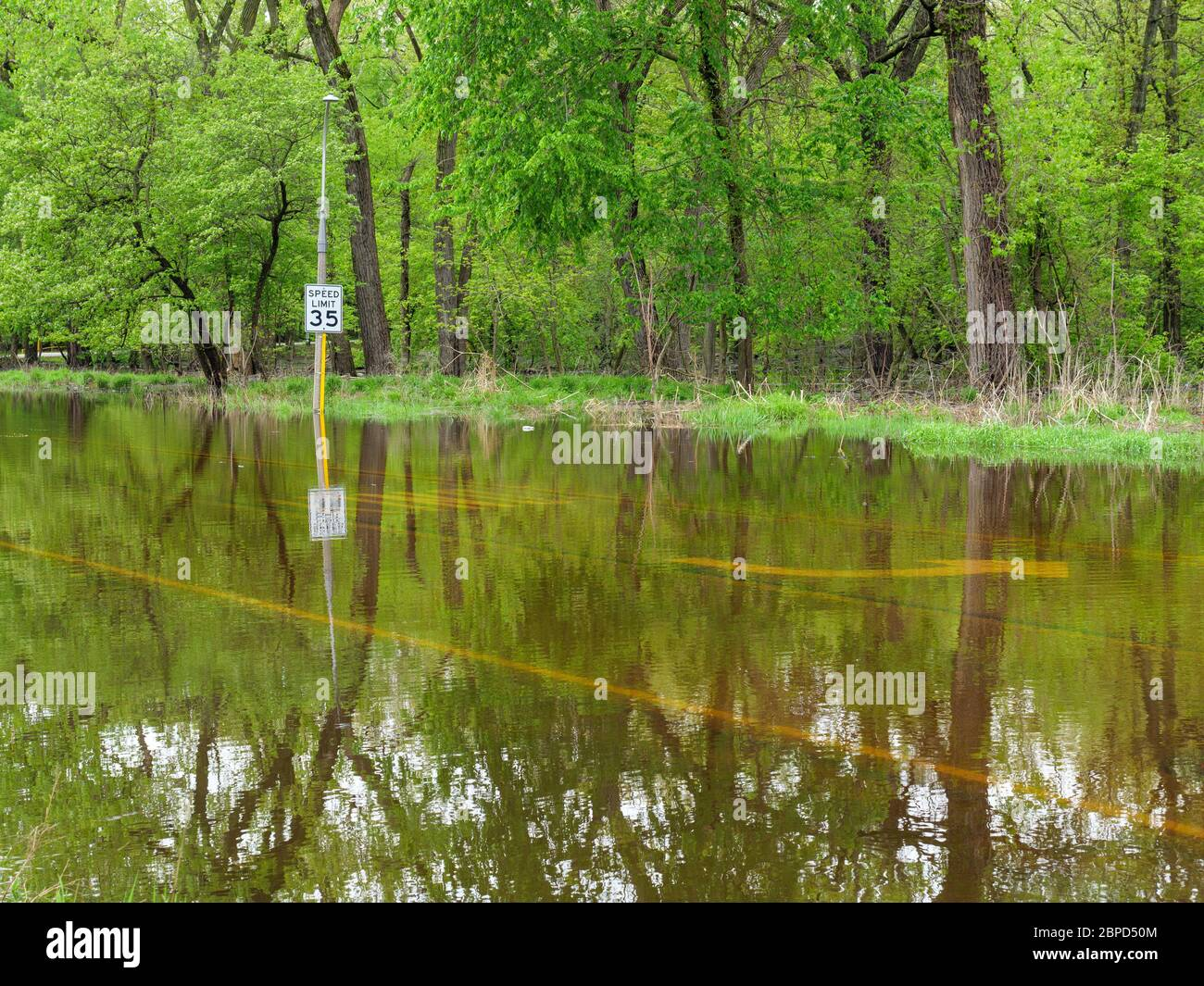 River Forest, Illinois, USA. 18th May 2020. Floodwaters from the Des Plaines River fill Chicago Avenue where it passes through Thatcher Woods Forest Preserve. Stock Photo