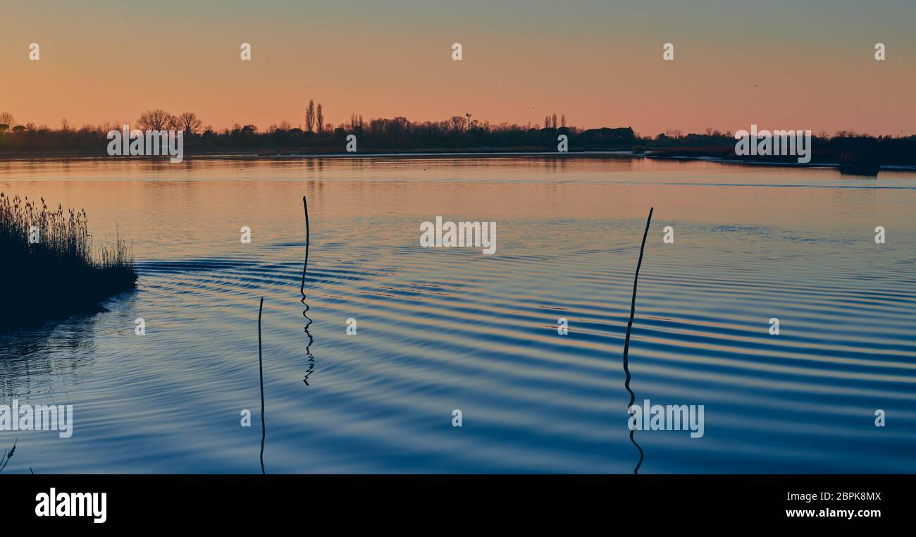 Spectacular red and purple sunset in winter on the blue sea of the lagoon of Caorle in Venice, Italy, with three reeds reflected in the water Stock Photo